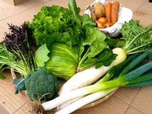 2012-10-30 野菜セットL_original